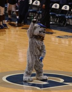 Georgetown's Mascot